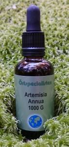 s-artemisia-50-mossa(1)